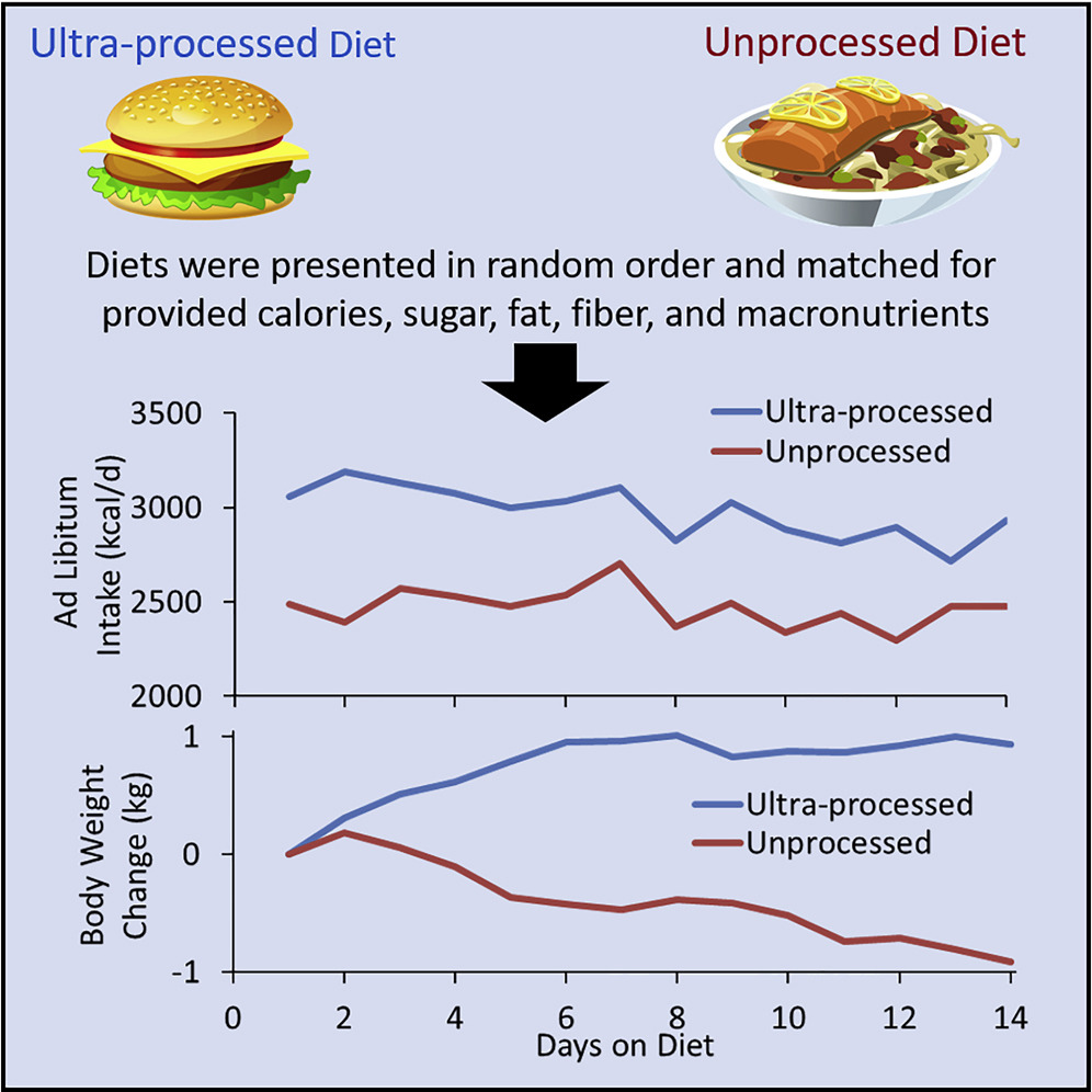 limit ultra processed foods